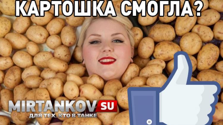 Неужели картошка смогла? Новости