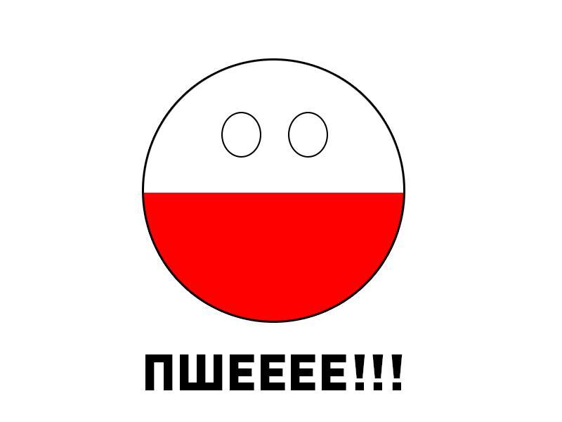 Польский экипаж, эмблемы и надписи Новости